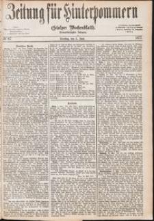 Zeitung für Hinterpommern (Stolper Wochenblatt) Nr. 87/1877