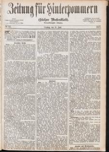 Zeitung für Hinterpommern (Stolper Wochenblatt) Nr. 95/1877