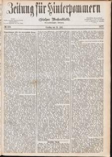 Zeitung für Hinterpommern (Stolper Wochenblatt) Nr. 119/1877