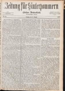 Zeitung für Hinterpommern (Stolper Wochenblatt) Nr. 131/1877