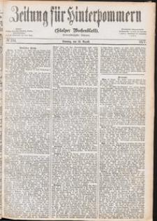 Zeitung für Hinterpommern (Stolper Wochenblatt) Nr. 134/1877