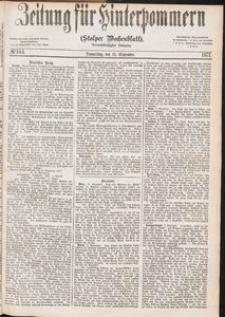 Zeitung für Hinterpommern (Stolper Wochenblatt) Nr. 144/1877