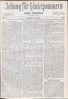Zeitung für Hinterpommern (Stolper Wochenblatt) Nr. 157/1877