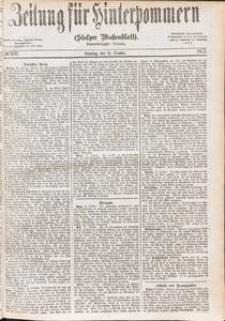 Zeitung für Hinterpommern (Stolper Wochenblatt) Nr. 166/1877