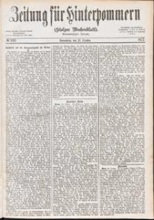 Zeitung für Hinterpommern (Stolper Wochenblatt) Nr. 169/1877