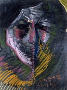 Portrait Helena Białynicki-Birula's [14]