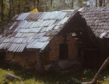 Piec chlebowy z licem wymurowanym z cegły, sklepieniem glinianym i tłem z cegły. Obudowa drewniana pokryta szyndlami - Kobylasz