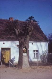 Kapliczka w pniu drzewa - Nadole