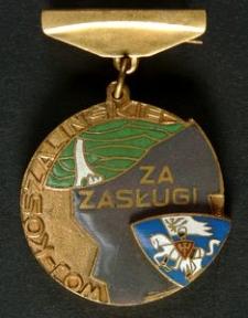 Odznaka Honorowa za Zasługi w Rozwoju Województwa Koszalińskiego + Legitymacja Nr 0111