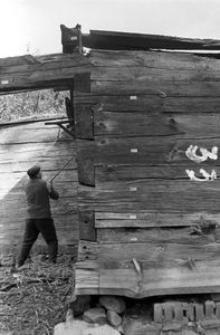 Chata zrębowa, podcieniowa - Lipuska Huta [16]
