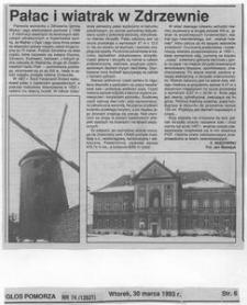 Pałac i wiatrak w Zdrzewnie