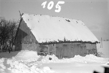 Chlew ryglowy ze stodołą - Klukowa Huta [1]