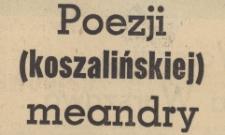 Poezji (koszalińskiej) meandry