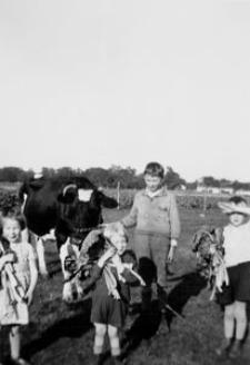 Zbiór rabarbaru w Zębowie. Chłopiec ze wsi w tle za dziećmi z Hamburga: Christel (5 l.), Reimundem (3 l.), Karlem (7 l.)