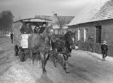 Dowóz dzieci wiejskich do szkoły wozem konnym, tzw. bonanzą