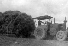 Zwózka siana w gospodarstwie rolnym w Malęcinie