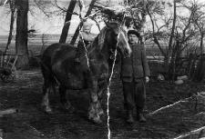 Bolesław Dębek (1919-1994) z synem Stanisławem (ur. 1955 r.) prowadzi konia otrzymanego w ramach akcji UNRRA (z ang. United Nations Relief and Rehabilitation Administration – Administracja Narodów Zjednoczonych do Spraw Pomocy i Odbudowy)