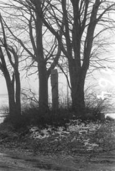 Kapliczka na słupie kamiennym - Łosienice [3]