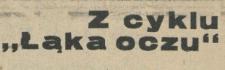 """Z cyklu """" Łąka oczu"""""""