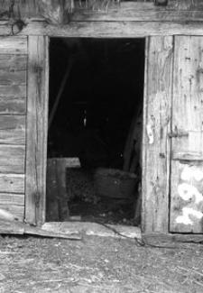 Chlew - Raduń [28]
