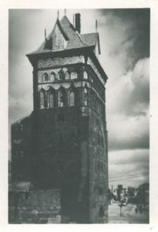 Gdańsk i Kaszubi w XX-leciu międzywojennym (16)