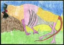 Pies Witkacego
