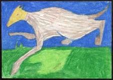 Koza Witkacego