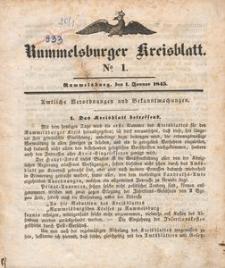 Kreisblatt des Königlichen Landraths-Amtes zu Rummelsburg für das Jahr 1845