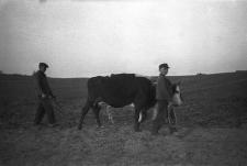 Gdańsk i Kaszubi w XX-leciu międzywojennym (358)