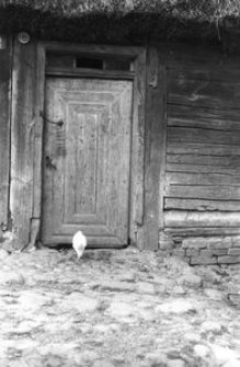 Drzwi w chacie - Wilczewo