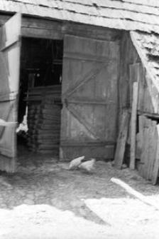 Stodoła szkieletowa - Zawory