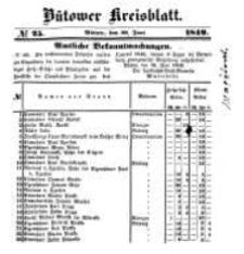 Kreisblatt des Bütower Kreises 1849 nr 25