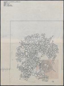 Grzybnica - Obiekt Nr 13. Stan. 1