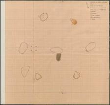 Grzybnica - rzut poziomy Kręgu IV. Stan. 1