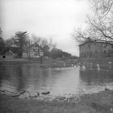 Folwark z budynkiem inwentarskim z I poł. XX w.(1914 r.) - Luzino