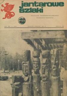 Jantarowe Szlaki, 1982, nr 2