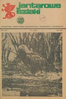 Jantarowe Szlaki, 1986, nr 2