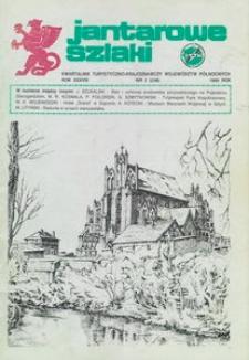 Jantarowe Szlaki, 1995, nr 2