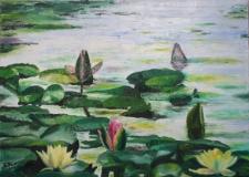 Grzybienie na jeziorze Stobór