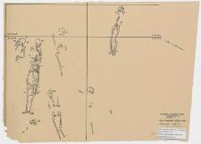 Koszalin - Góra Chełmska, stanowisko 1. Rzut poziomy szkieletów, wykop I