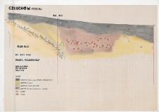 Człuchów - Fosa IIa. Stanowisko 1. Profil południowy