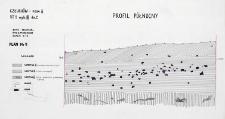 Człuchów - Fosa II. Stanowisko 1. Profil północny
