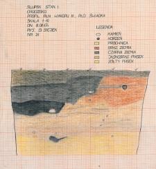 Słupsk - Grodzisko. Profil południowy. Stanowisko 1, wyk. III