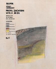 Słupsk - Grodzisko. Profil zachodni. Stanowisko 1, wyk. II, Ar 84