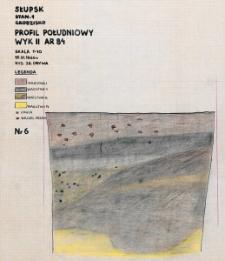 Słupsk - Grodzisko. Profil południowy. Stanowisko 1, wyk. II, Ar 84