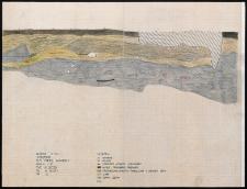 Słupsk - Grodzisko. Profil północny. Stanowisko 1, wyk. II