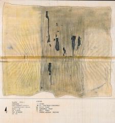 Słupsk - Grodzisko. Rzut poziomy wykopu II z konstrukcjami drewnianymi. Stanowisko 1