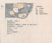 Słupsk - Grodzisko. Skupisko kamieni i gliny w płn-zach. narożniku wykopu
