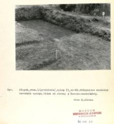 Dokumentacja fotograficzna z badań archeologicznych w Słupsku. Stanowisko 1