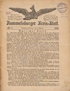 Rummelsburger Kreisblatt 1873